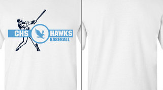 Baseball Player Hawks Mascot Design Idea
