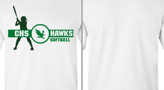 Hawks Mascot Softball Player Design Idea