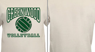 Custom Designs Volleyball School Team