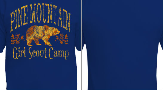 Pine Mountain Camp Design Idea