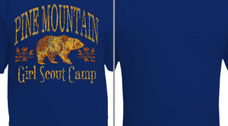 Pine Mountain Camp Design Idea