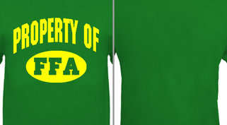 Property of FFA Design Idea