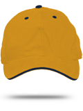 AH36 Authentic Contrast Cap