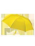 Custom Supplies : Auto Open Folding Umbrella